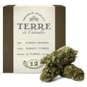 Terre di Cannabis Riserva Opulenta 12% CBD Ανθοί Κάνναβης 3gr