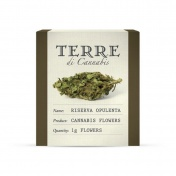 Terre di Cannabis Riserva Opulenta 12% CBD Ανθοί Κάνναβης 1gr
