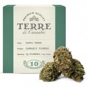 Terre di Cannabis Santa Verde 10% CBD Ανθοί Κάνναβης 3gr