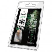 Plant of Life Northern Lights Feminized - 3 Σπόροι