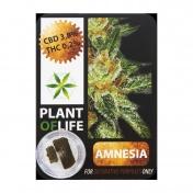 Plant Of Life Amnesia Haze 3,8% CBD Solid 1gr