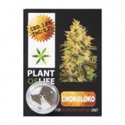 Plant Of Life Chokoloco 3,8% CBD Solid 1gr