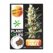 Plant Of Life Lemon Haze 3,8% CBD Solid 1gr